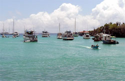 boats at Puerto Ayora